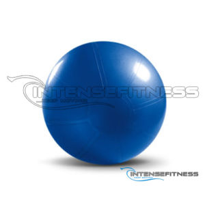 Premium Stability Ball